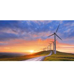 Microgrids & Renewable Energy